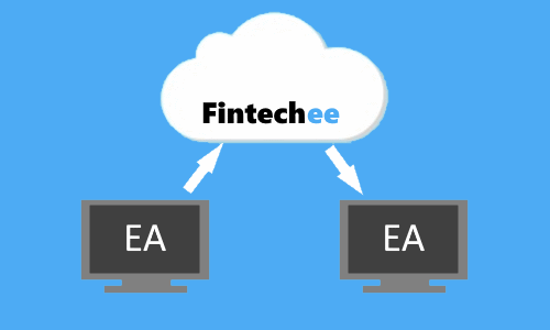 Fintechee provides copy trading to help traders follow the signals published by the professionals.